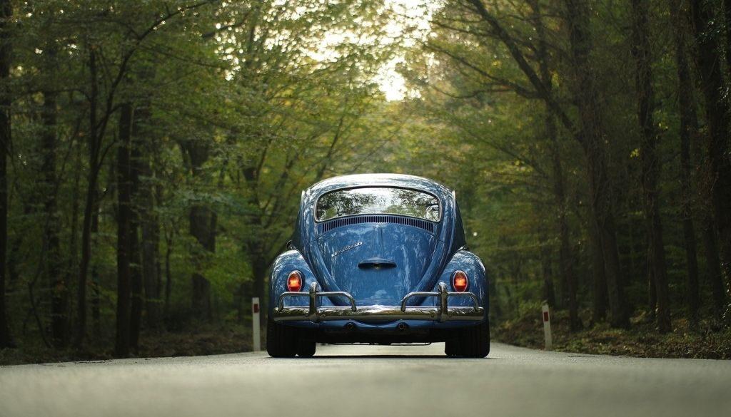 When should elderly stop driving?